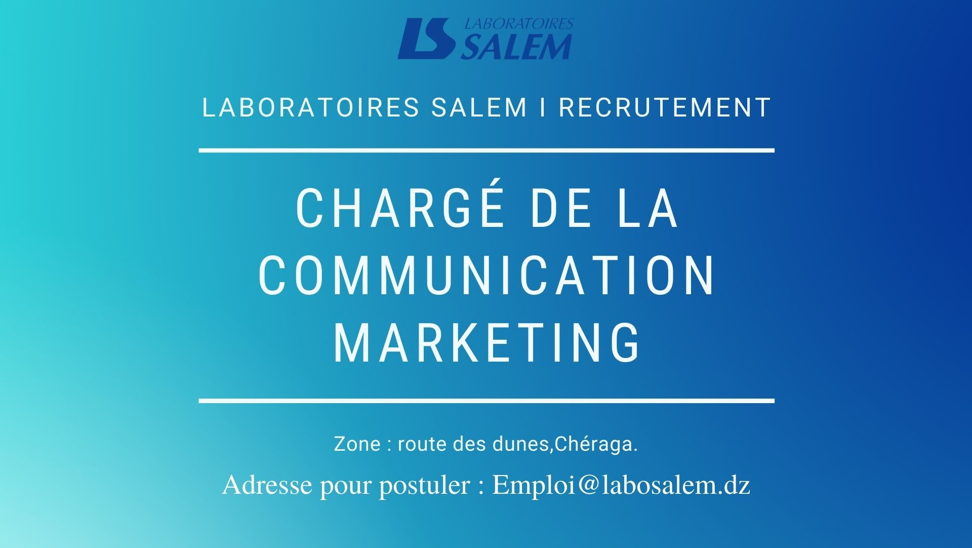 marketing, recrutement, communication, laboratoires salem, labosalem, emploi, travail, job, khedma, wadifa, diplomes, pro, informatique, développement web, infographe, médecine marketing, pharma